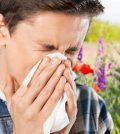 How to treat hay fever