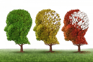 Alzheimer's Disease May Be Driven By Inflammation According To Study