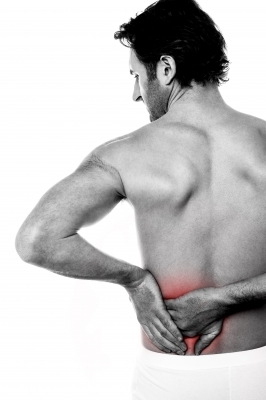 supplements for back pain